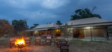 Acacia Migration Camp (July to Nov)