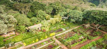 Gibb's Farm