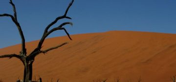Adventures in Namibia – From $3,700