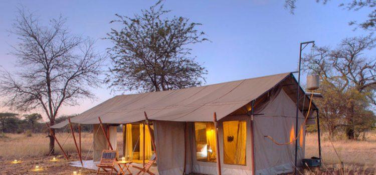 Ubuntu Migration Camp (July- Nov)