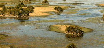 Breathtaking Botswana – From $6,175