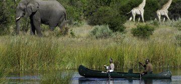 Breathtaking Botswana – From $10,338