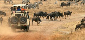 Great Tanzania Journey