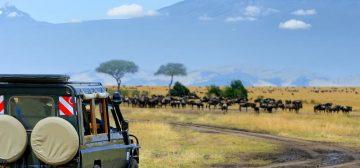 Captivating Kenya