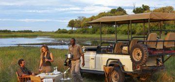 Classic Botswana