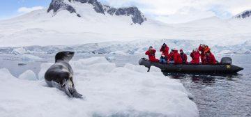 Journey Below the Antarctic Circle: Jan 17-30, 2019